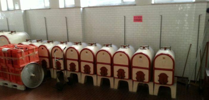 CREA_antiche_cisterne_vino